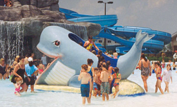 Willie the Whale Slide Model 1800-11