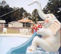 Elephant Spray Slide Model 1800-12
