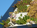 Rocky Mtn Pavilion Series Model 98-RE23037-6T - Green Roof detail