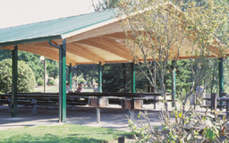 Siskiyou Mountain Pavilion Series Model 98-S36040-4T